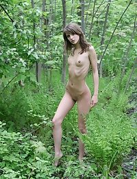 Side-trip en rapport a forest