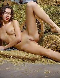 Absolutely Elegant Untrained Nudes